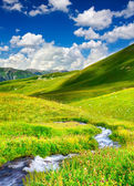 River on green meadow — Stockfoto