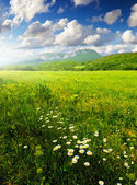 Bright green meadow and clouds — Stock Photo