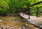 Bridge in canyon — Stock Photo
