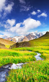 River in mountains — Stock Photo