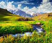 River on the mountain field — Stock Photo
