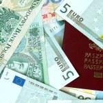 Passport cover and money — Stock Photo #19298033