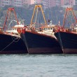 Stock Photo: Vessels in Hongkong