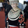 Chinese costume - China Cultural Exhibition — Stock Photo #23218748