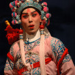 Chinese opera — Stock Photo #30322461
