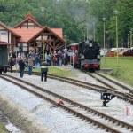 Narrow gauge railway in Poland — Stock Photo #44559641