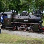 Narrow gauge railway in Poland — Stock Photo #44559677