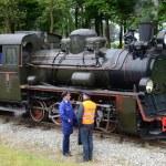 Narrow gauge railway in Poland — Stock Photo #44559723