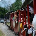 Narrow gauge railway in Poland — Stock Photo #44575223