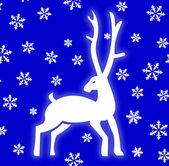 Winter deer — Stock Photo