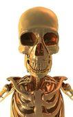 Golden Skull — Stock Photo