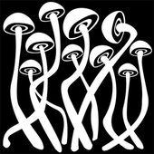 Agaric cogumelos isoladas no fundo preto — Fotografia Stock