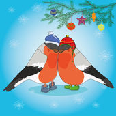 Christmas background with bullfinches and spruce — Vecteur