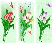 Three songs with a bouquet of tulips — Stock Vector