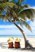Sunbathing at resort. Couple sitting at the beach under palm tree — Stock Photo