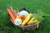 Fresh vegetables in basket on the grass — Stock Photo