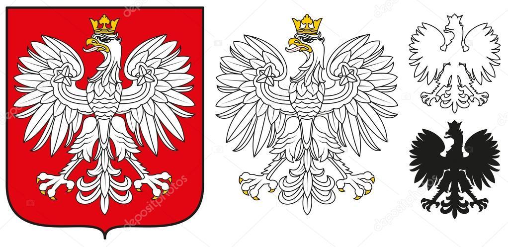 polska god u0142o orze u0142 bia u0142y  tarcza i sylwetka grafika eagle vector art eagle vector png