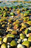 Rocky Beach Flooded With Water — Stock Photo