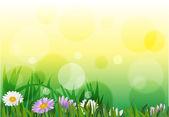 Primavera — Vector de stock