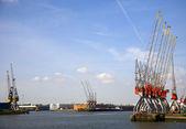 Cranes in the harbor of Rotterdam — Stock Photo