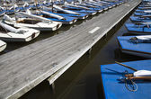 Molte barche a vela blu nella marina — Foto Stock