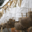 Offerings for a temple ceremonie in Bali — Stock Photo #19280529