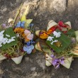 Canang, a Balinese offering to the Gods — Foto de Stock