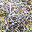Background of shredded paper used for protection packed material — ストック写真