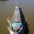 Stock Photo: inland navigation on the river waal in the netherlands