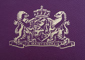 New Dutch passport with embedded microchip — Stock Photo