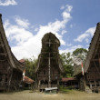 Traditional house (tongkonan) in Tana Toraja, Sulawesi, Indonesia — Stock Photo