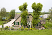 Traditional Dutch farm house alongside the dike of the river Lek — Stock Photo