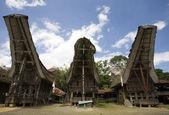 Traditional house (tongkonan) in Tana Toraja, Sulawesi, Indonesia — Foto Stock