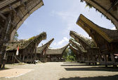 Toraja village with traditional houses in a row, Toraja, Sulawesi, Indonesia — Stock Photo
