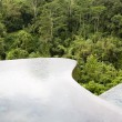 Infinity pool in the jungle on Bali - Stock Photo
