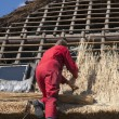 Workman thatching a new roof - Stockfoto