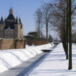 Stock Photo: Dutch castle in winter landscape