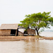 Stock Photo: Shack on countryside in Mekong Delta, Vietnam