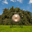 Gong used for sound healing — Stock Photo