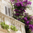 Постер, плакат: Old stone balcony with flowers