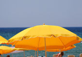 Yellow umbrellas on the beach — Stok fotoğraf