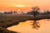Magical Sunrise — Stock Photo