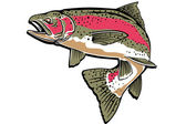 RAINBOW TROUT — Stock Photo