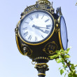 Street clock — Stock Photo #21935143