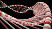 DNA Close-up — Stock Photo