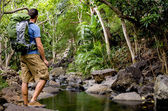 Hiker and Tropical River — Stockfoto
