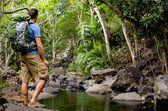 ハイカーおよび熱帯川 — ストック写真