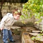 Cute boy gadening in his back yard — Stock Photo
