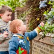 Two little boys picking flowers — Stock Photo #27658111