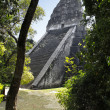 Royalty-Free Stock Photo: Tikal Ancient Maya Temples, Guatemala